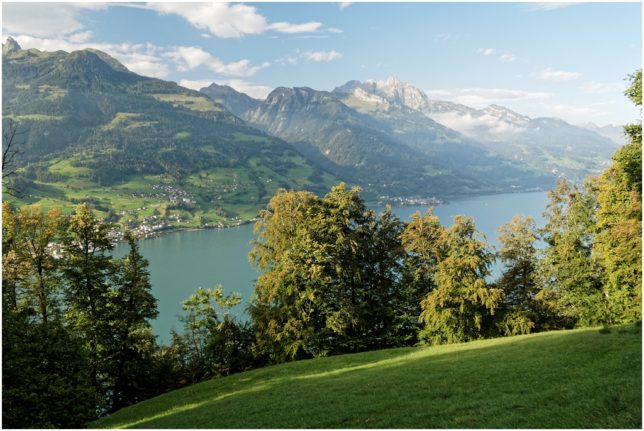 Schöne Ausblicke über den See von oben...