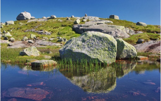 Landschaftsdetail am Lysefjorden