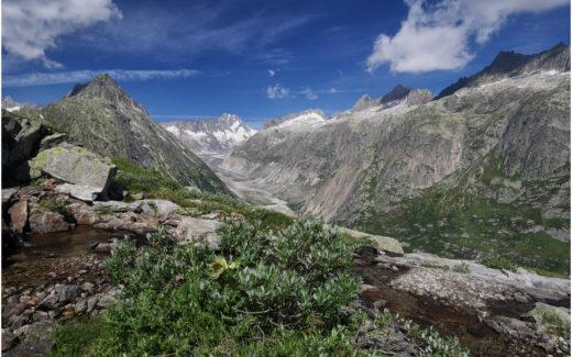 Blick in Richtung Unteraargletscher und Lauteraarhorn
