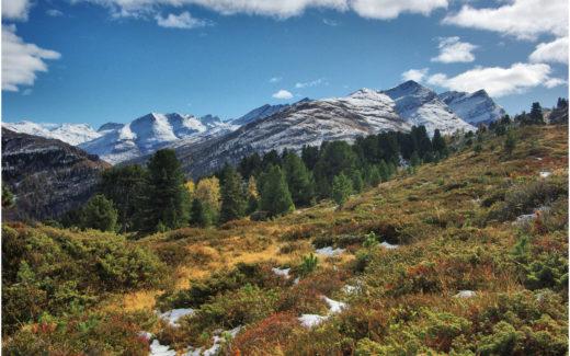Alp am Weg zur Furgga