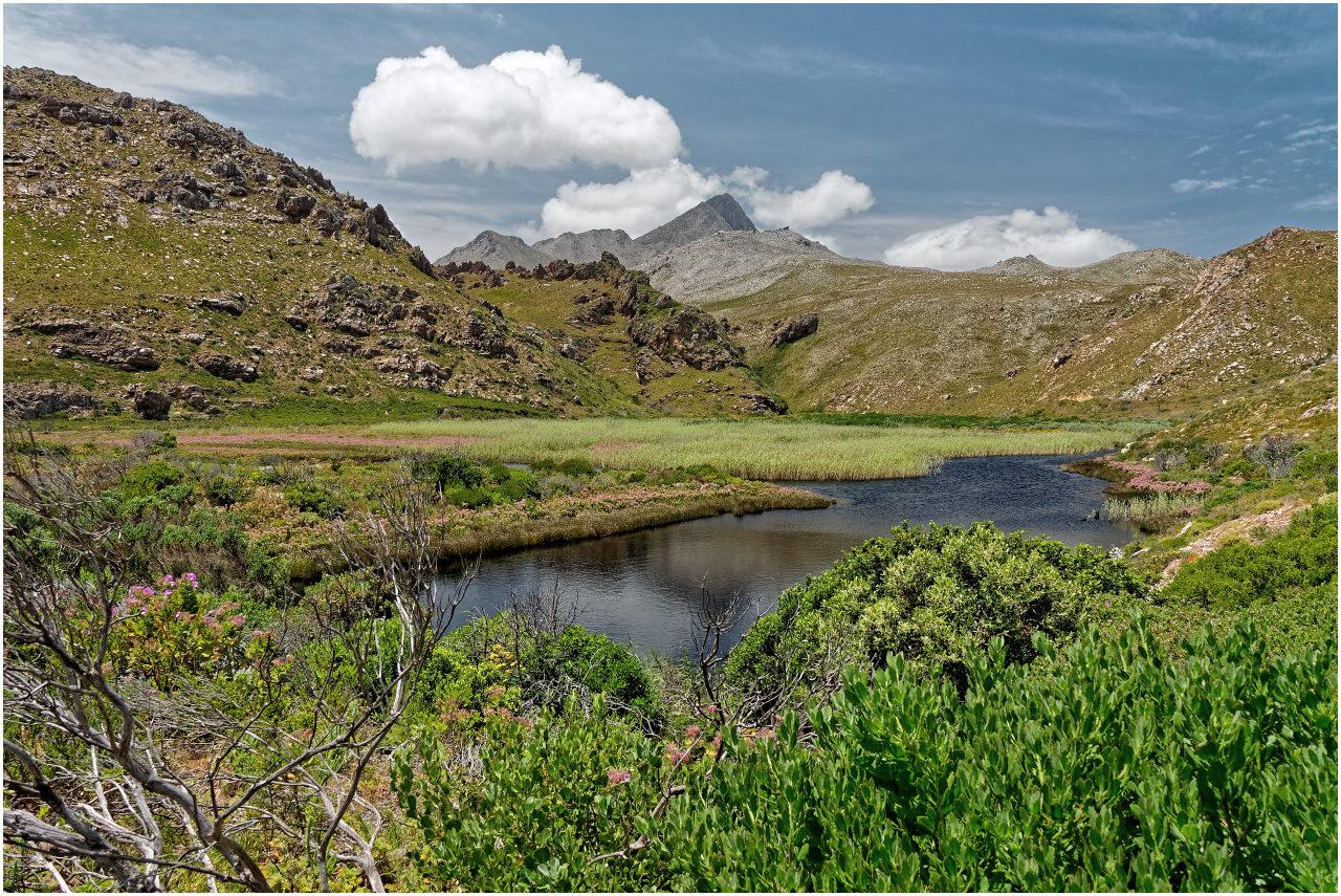Einblick in die südafrikanische Bergwelt bei Rooi-Els