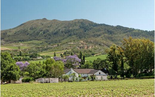 Weingut in der Nähe von Wellington