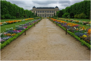 Dank strömendem Regen kein Mensch im Jardin des Plantes...