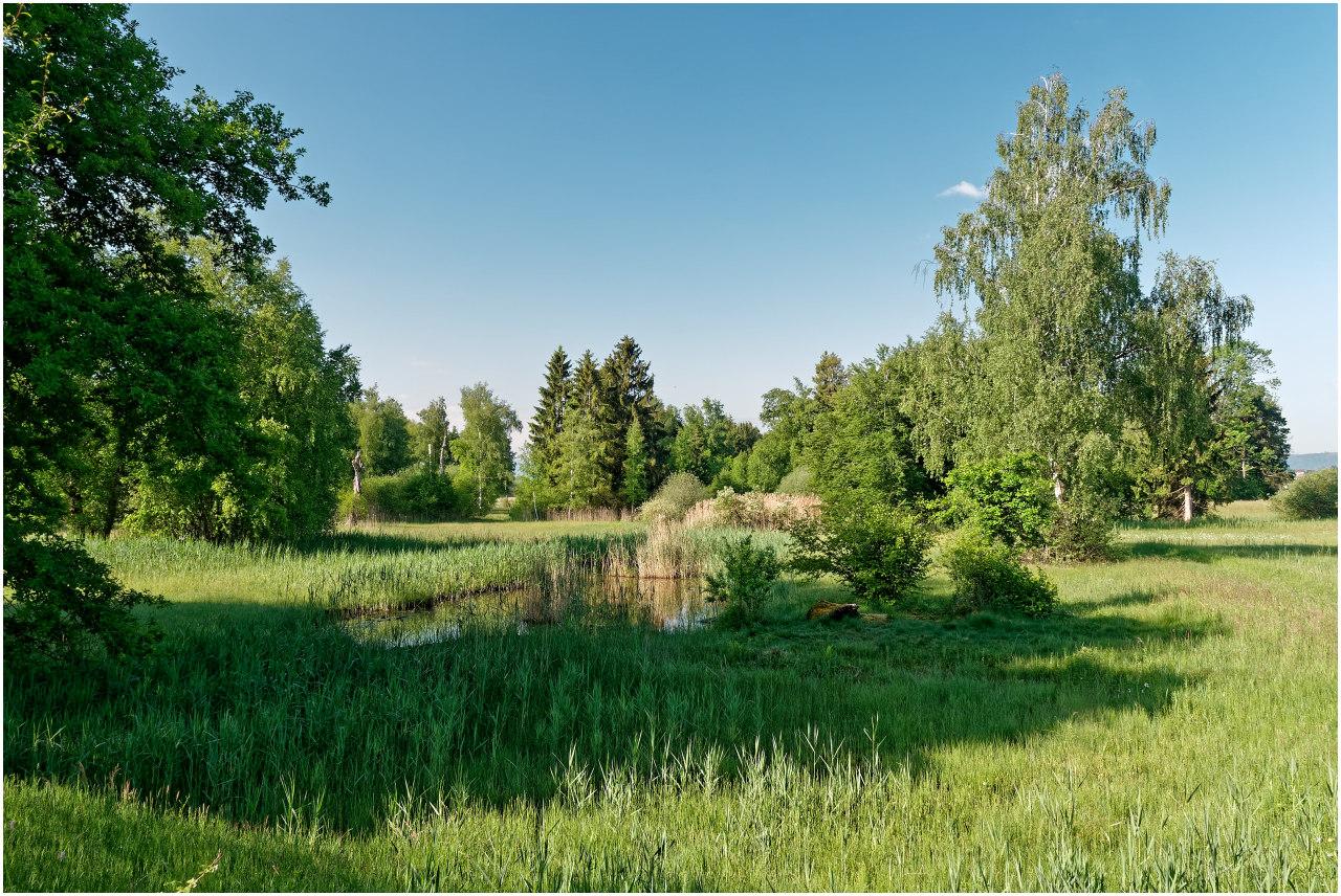 Kleiner Moorsee beim Ötschbüel am Ostufer