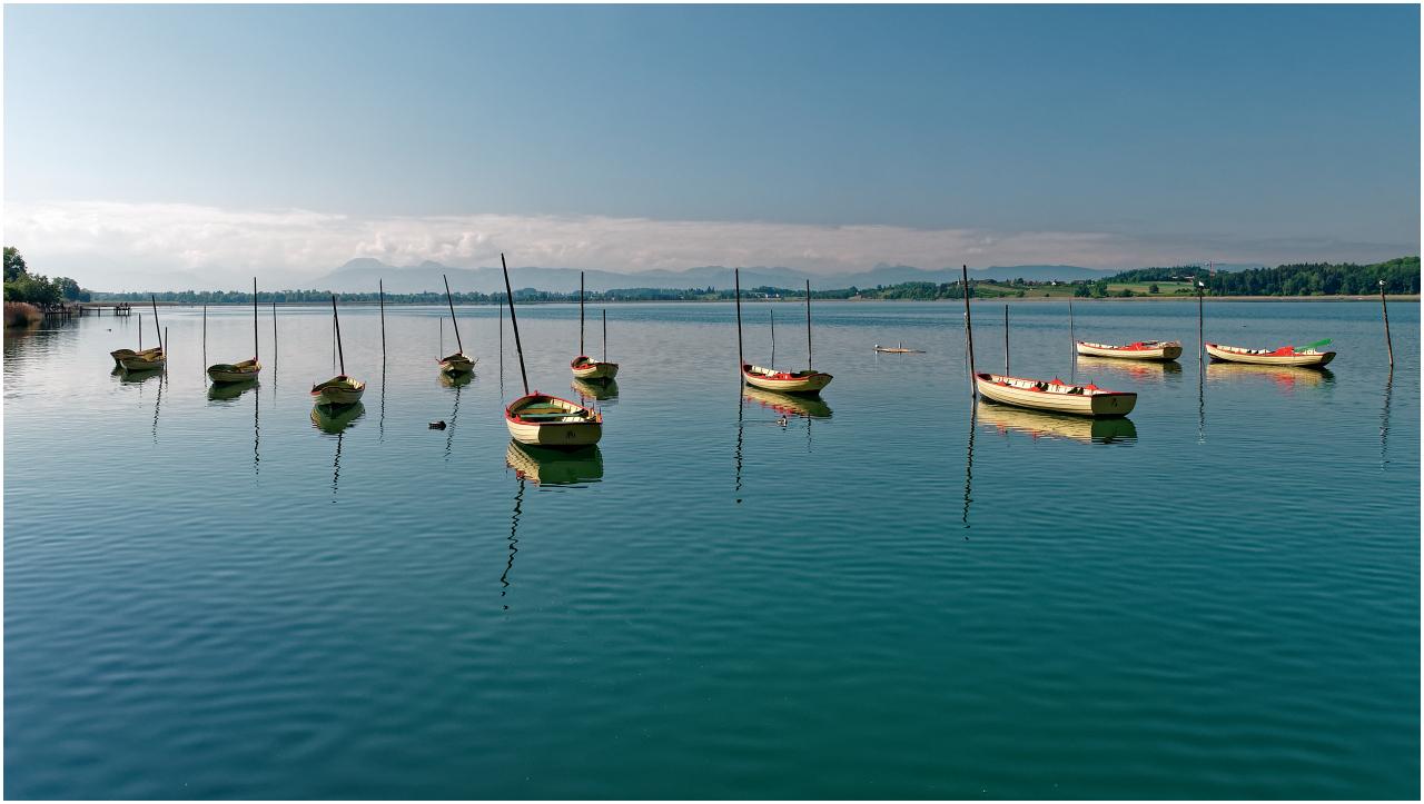 Boote beim Hafen Pfäffikon