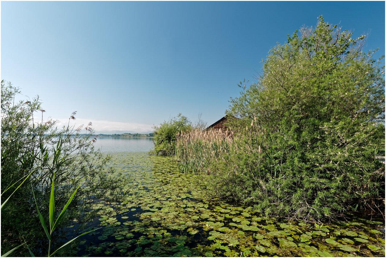 Verstecktes Bootshaus beim Giwitzenriet am Nordufer