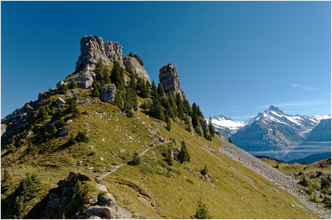 Am Weg zum Oberberghorn...