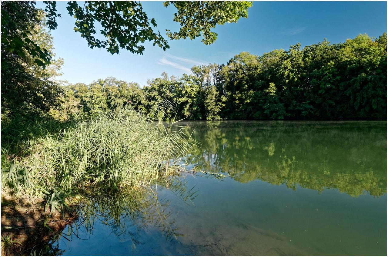 Am solothurnischen Amazonas?