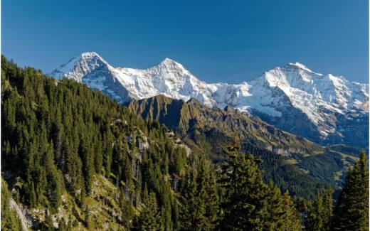 Eiger, Mönch und Jungfrau, von der Schynige Platte-Bahn aus gesehen