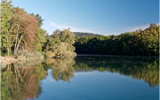 Aare beim Stauwehr Schachenwald