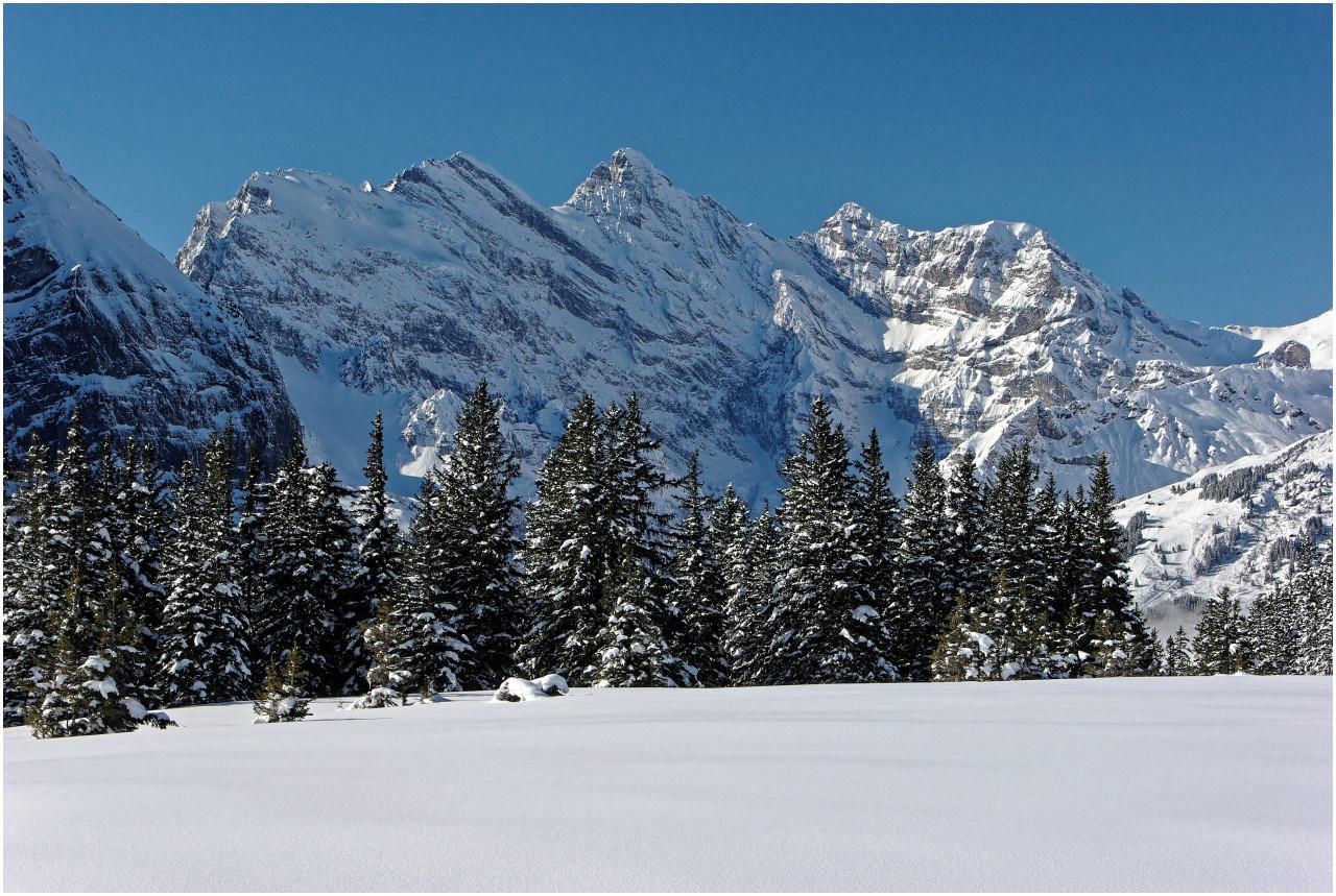 Tief verschneite Winterlandschaft auf der Wengernalp