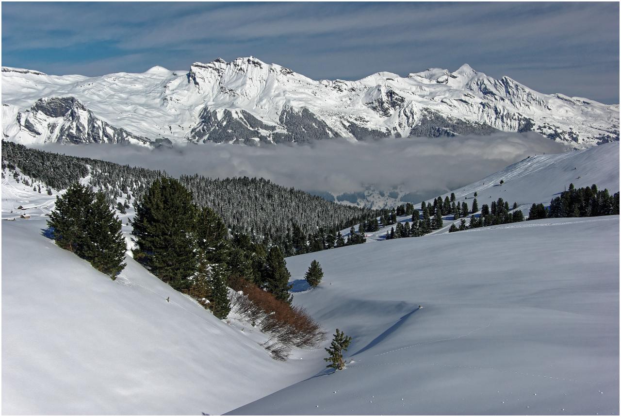 Blick über die Alp Wärgistal hinweg ins Tal der Schwarzen Lütschine