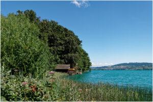 Bootshäuser in der Nähe von Birrwil