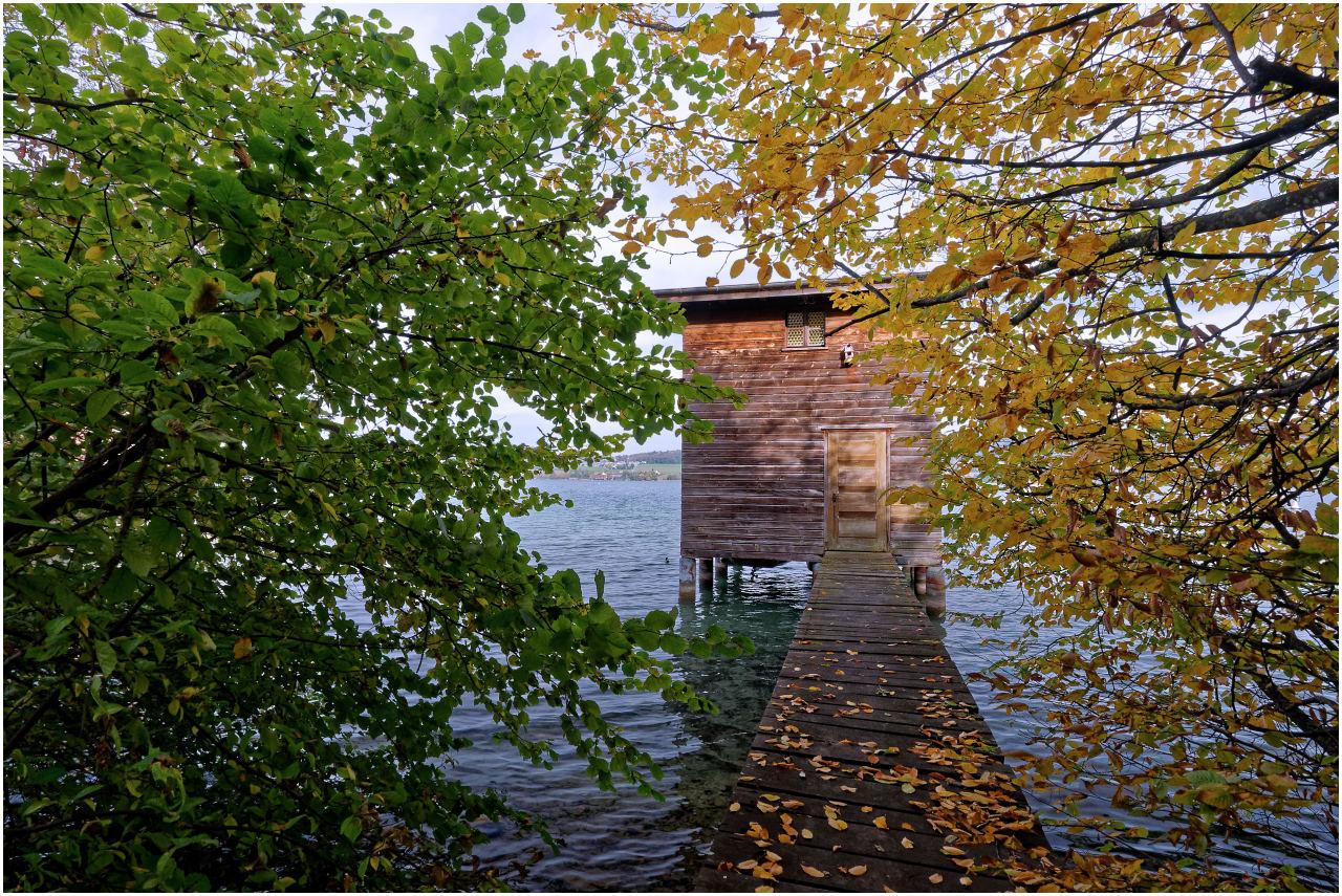 Die zahlreichen Bootshäuser sind durchwegs ein wenig im Uferwald versteckt