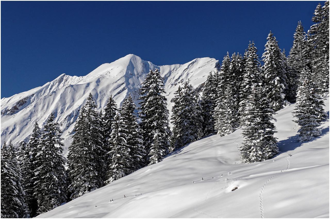 Tief verschneite Berglandschaft