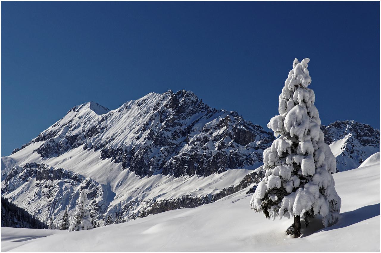 Solche Szenen gibt es nur nach Neuschnee, gefolgt von eisiger Kälte zu sehen
