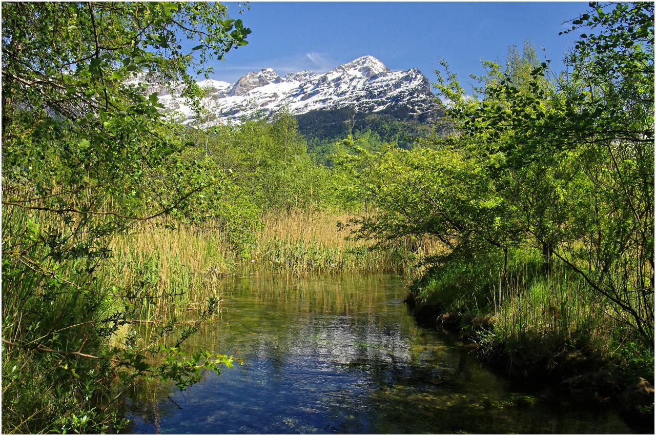 Naturschutzgebiet in Flüelen