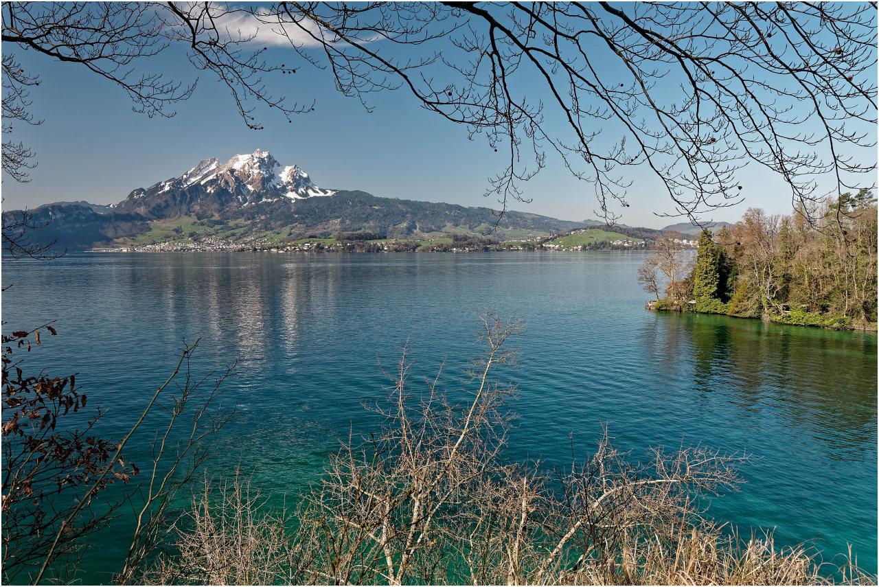 Eine Bucht bei Hertenstein mit Blick zum Pilatus