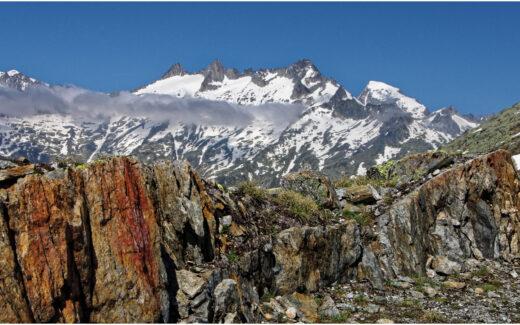 Bergfrühling am Grimselpass