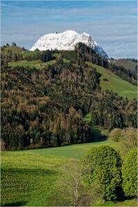 Der Moléson - hier noch in weiss - prägt das Landschaftsbild