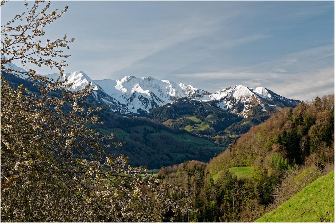 Ausblick zu den Bergen des Pays d'Enhaut