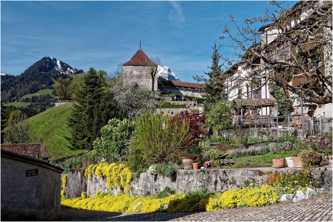 Gärten zwischen dem Städtchen und der Stadtmauer
