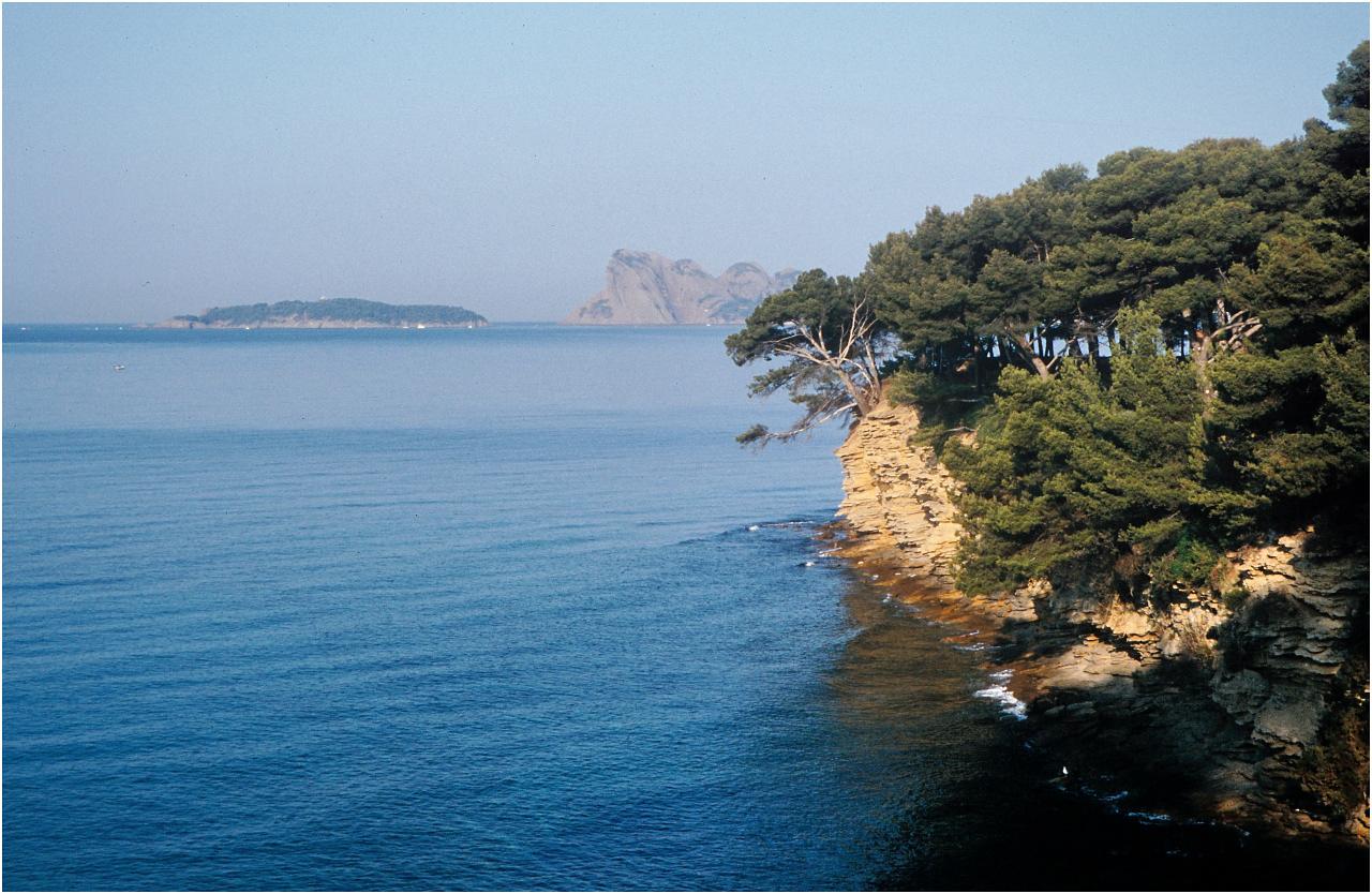 Küste bei La Ciotat mit Cap Canaille