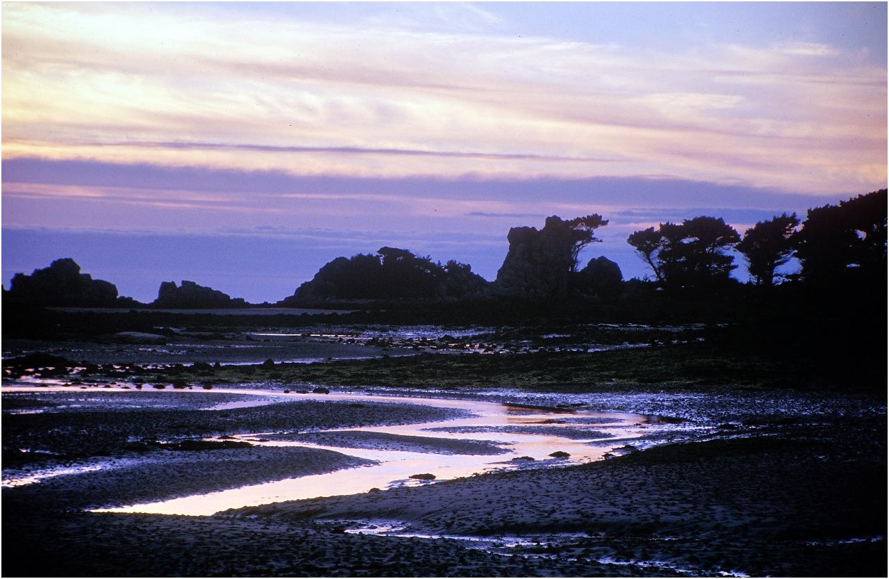 Ebbe an der Küste
