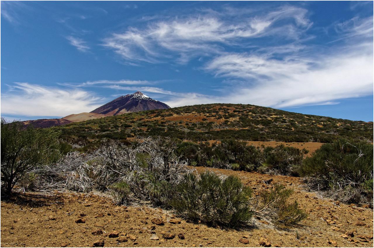 Oder vielleicht doch nicht? Der Gipfel des Teide jedenfalls ist immer im Blickfeld.