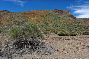 Farbige Berge mit wenig Vegetation