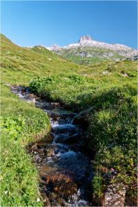 Kurz nach dem Oberalppass, wo der Vorderrhein noch ein kleiner Bergbach ist