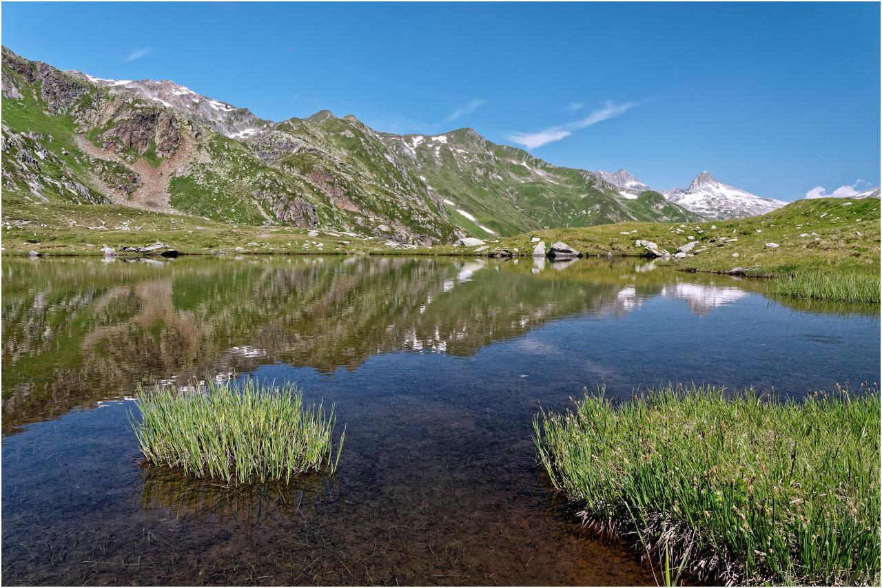 Am Ufer des namenlosen Moorsees beim Lai Urlaun