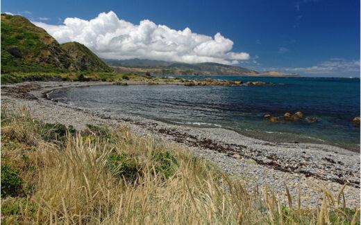 Strand in Breaker Bay